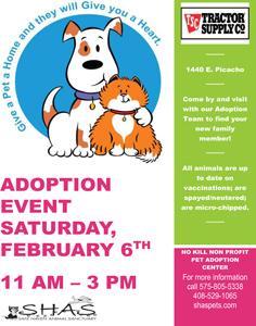 shas-adoptionevent-236