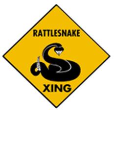 rattlesnake-236