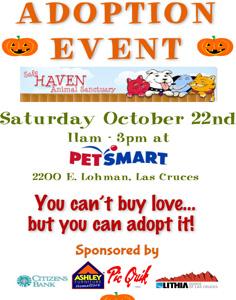 Petsmart-Adoption-Oct-236