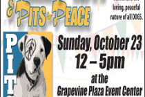 apa-pits4peace-236