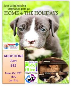 APA Home 4 the Hoidays 2016-236