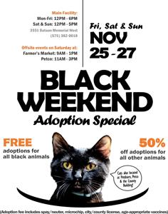 black weekend ascmv-236