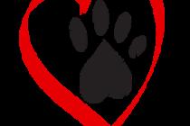heart-paw-236