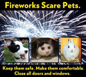 fireworksscarepets