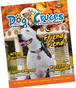 DogCruces-Fall2017-web