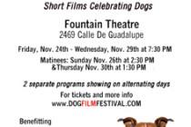 film-november2017-236