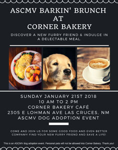 BrunchNBark-CornerBakery-236