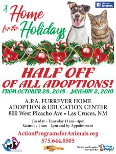 APA-Home-4-Holidays-Flyer-2018