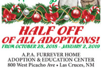 APA Home 4 Holidays Flyer 2018.indd